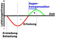 hp-superkompensation-volltext