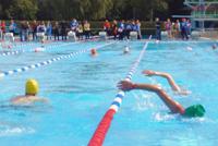 schwimmen triathlon gttingen